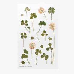 Appree Pressed Flower Stickers - Four Leaf Clover