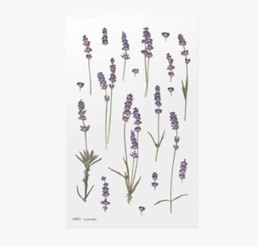 Appree Pressed Flower Stickers - Lavender