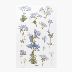Appree Pressed Flower Stickers - Moss Phlox