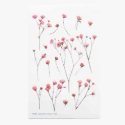 Appree Pressed Flower Stickers - Gypsophila