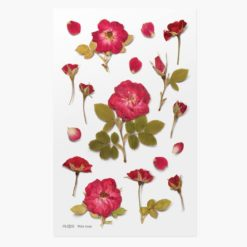 Appree Pressed Flower Stickers - Mini Rose