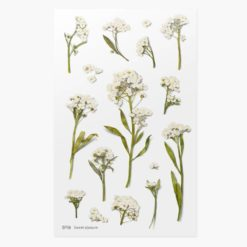 Appree Pressed Flower Stickers - Sweet Alyssum